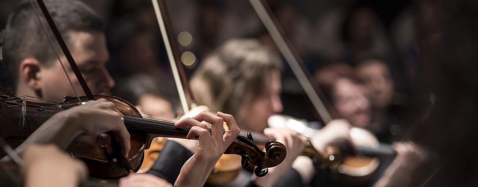 música, erudita, aprendizado, estudo, concentração, clássico, quebra nozes, lago dos cisnes, ópera, balé