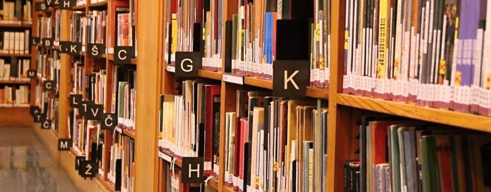 No dia Nacional da Biblioteca, veja lista com as que você precisa conhecer/Pixabay